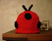 Lady Bug Lady Bug fly away ....  Hand knit hat