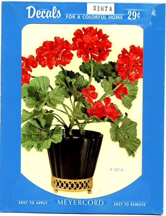 1940's Meyercord Decal  Large  GERANIUM in POT Florals Flowers X 167-a
