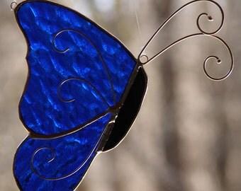 So Blue Butterfly