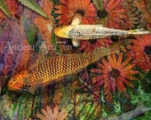 Kona Kurry 8x10 Koi Fish Tropical Art print