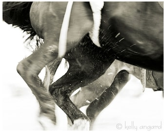 Horse Photo - black and white horse photograph - 8x10 photography, two running horses, rodeo nature - home decor