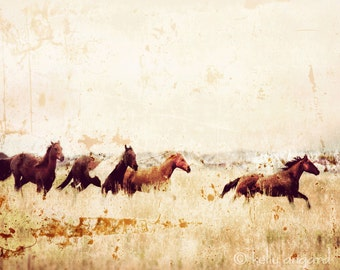 Horse Photograph, horse photography - 8x10 wild horses running photo, Colorado landscape, mountains nature, wall decor