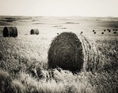 Long After the Dust Bowl Days - Fine Art Photography - 8 x 10