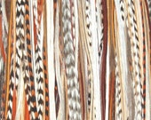 SALE Hair Feather Extension Brown Natural Blend 3 LONG feathers - Free link : all colors available