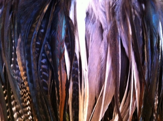 SALE 40 thick LONG Salon Feathers for Hair Extensions : Whiting Natural Gray and Black Colors