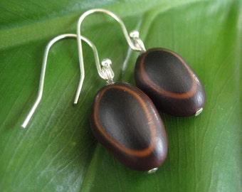 Guanacaste Seed Earrings - organic seed earrings