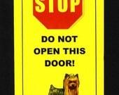 Yorkie Muscle Dog Inside - 4 lbs. of Raw Terror