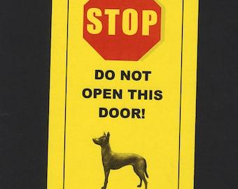 Dangerous Xoloitzcuintli Inside- Has Killed Squeaky Toy