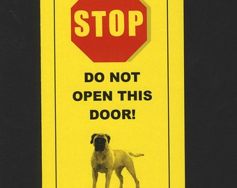 Dangerous Bullmastiff Inside - Has Killed Squeaky Toy