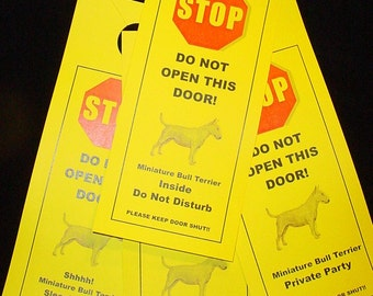 Miniature Bull Terrier's Friendly Alternative to Beware of Dog signs Keeps Dog Safe