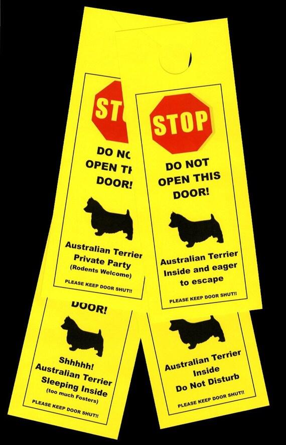 Australian Terrier's Friendly Alternative to Beware of Dog Keeps Dog Safe
