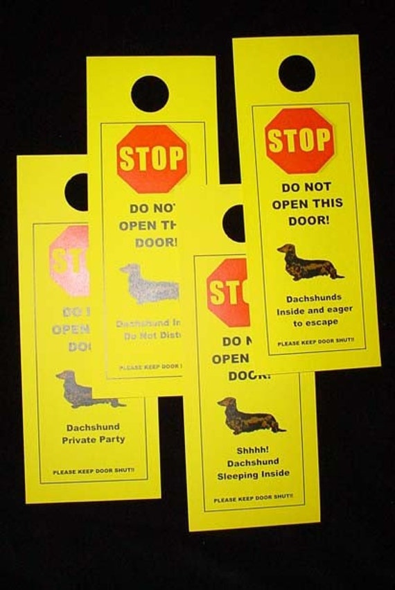 Long-Haired Dachshund's Friendly Alternative to Beware of Dog Signs