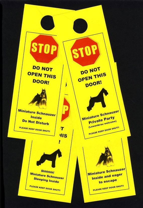 Miniature Schnauzer's Friendly Alternative to Beware of Dog signs Keeps Dog Safe