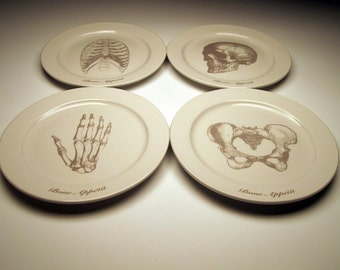 BONE APPETIT 9 inch dinner plates in Ghostie GREY