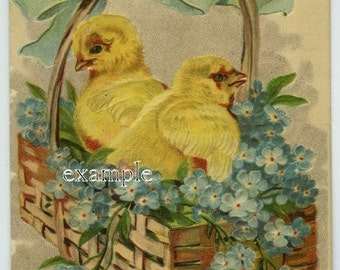 Digital download,Easter chicks in basket,great for cards, decoupage, collage,sewing.ornaments