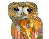 Colorful Owl - archival 8 x 10 print
