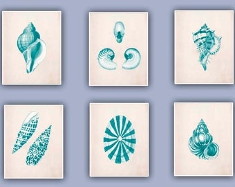 Vintage Seashells  Prints, Set of six 8x10 turquoise green prints, seashore shells, Nautical art