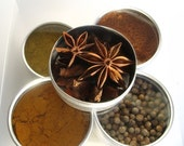 medium indian spice kit with recipes. the flavors of India at home in your kitchen.
