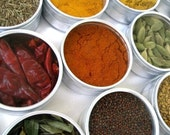 large magnetic indian spice kit. the flavors of India at home in your kitchen. recipes included.
