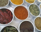 Indian spice kit in a brushed metal storage case - set of 15 - recipes included. the flavors of India at home in your kitchen.