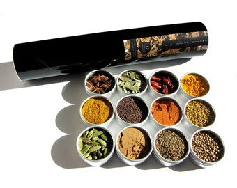 large magnetic indian spice kit with recipes included. the flavors of India at home in your kitchen.