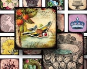 Royal Flora and Fauna 7/8 inch squares -- Two Digital Collage Sheets in One -- piddix 767