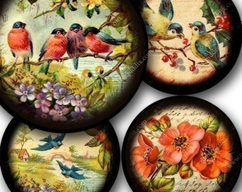 Flora and Fauna collage sheet in 2.6 inch circles for pocket mirrors and more -- piddix 725