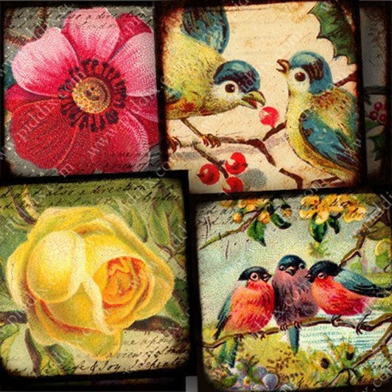 Flora and Fauna collage sheet in 1.5 inch squares One -- piddix 722