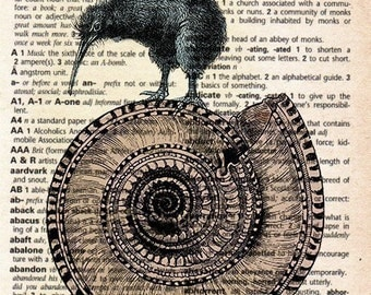 Antique Print on Vintage Dictionary Page - Kiwi