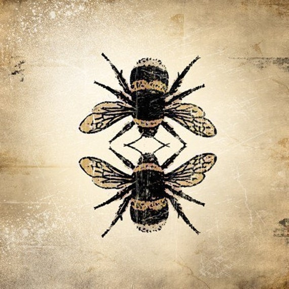 Insect Print - Bumble Bee