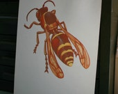 135 wasp - Vintage Large Flash Card