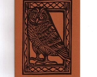 6 card set- Pueo the Hawaiian Owl