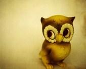 Vintage Owl 6x6 print