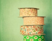 "8x10"" Antique Ribbons - for the crafter kitchen decor antique vintage cross processed green teal oranage"