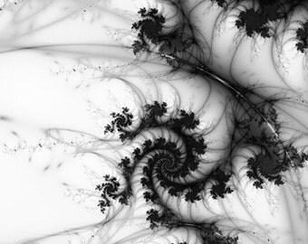 Fluid Dynamics, Matted Fractal Print