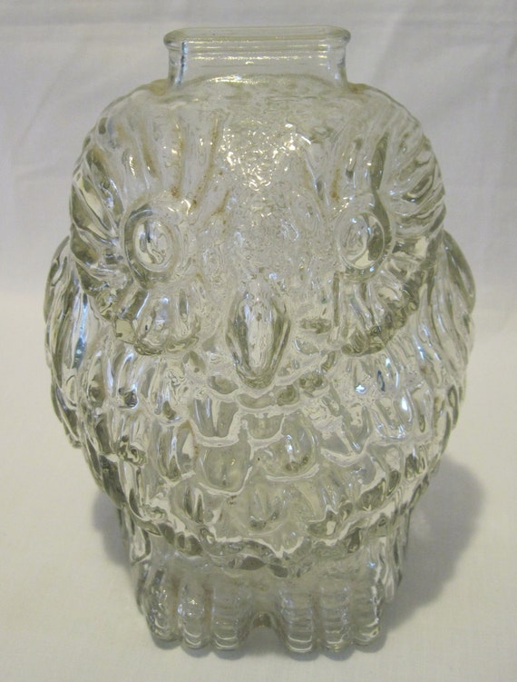 Clear Glass Owl Coin Bank