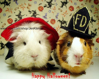 """GUINEA PIG Vampire & Firefighter Halloween Photograph - 8x10"""" Limited Edition Glossy"""