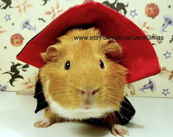 Attack of the Blood Thirsty GUINEA PIG VAMPIRE  - Happy Halloween -  Limited Edition Kitschy and Fun 8x10 Glossy Portrait Photograph