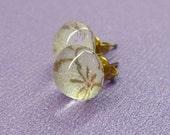 Glass Stud Earrings--White Blossom