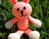 PDF - Sassy The Bunny Amigurumi Crochet Pattern - INSTANT DOWNLOAD