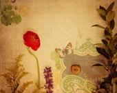 Abstract Fine Art Photograph, Golden, Mixed Media, Garden, Flower Art, Red Ranunculus, Texture, Butterfly, JOY, Home Decor, Square Print
