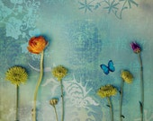 Abstract Fine Art Photograph, Mixed Media Garden, Flowers, Japan, Far East, Cool Blue Tones, Butterfly, Whimsy, Home Decor, Square 8x8 Print