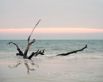 Fine Art Photo, Driftwood Photo, Shore, Lido Beach Florida, Ocean Print, Serenity, Pastel, Beach Art, Home Decor, Light Blue, Seascape Art