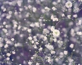 Fine Art Photograph, Flower Photo, Babys Breath, Purple, Lavender, Dainty, Floral Art, Botanical Print, Home Decor, Wall Art, Still Life