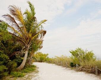 Fine Art Photo, Sanibel Island Art, Florida, Resort Art, Summer Vacation, Palm Tree Photo, Sage, Sandy Path, Beach Photo, Coastal Decor