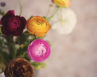 Fine Art Photograph, Colorful, Bouquet, Ranunculus Flower Art, Shabby Chic Photo, Flower Art , Yellow, White, Pink, Red, Summer, 11x14 Print