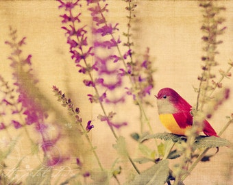 Fine Art Photo, Mixed Media Art, Purple Flowers, Bird Print, Red, Texture, Whimsy Art, Woodland Print, Nature Art, Home Decor, Small Art