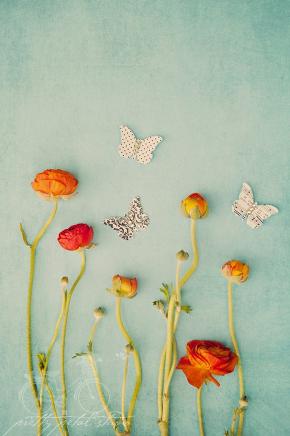 poppy flower and paper butterfly on teal vintage background photo still life
