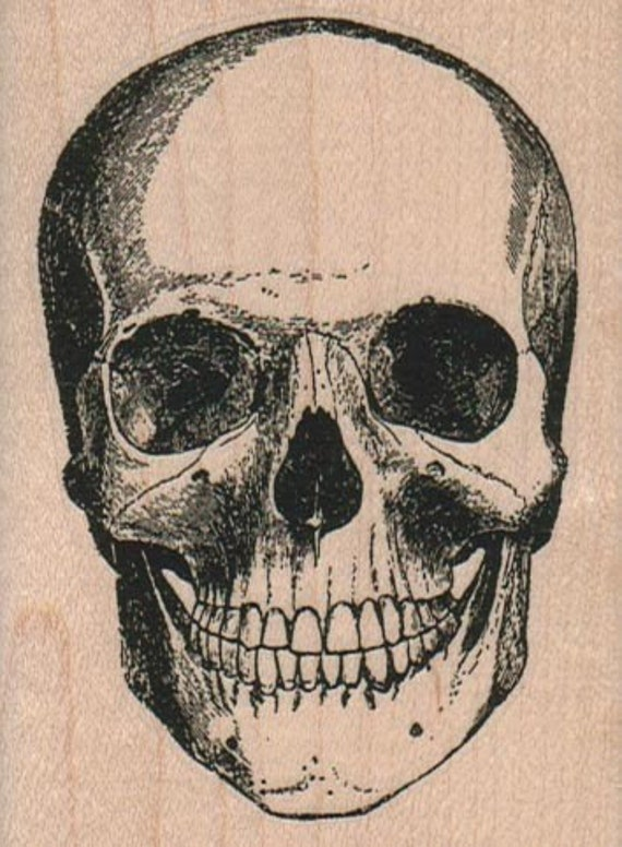 skulls rubber stampo Day of the Dead rubber stamps    unmounted 2403