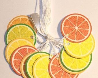 Sweet and Tart Citrus Prestrung TAGS - Lemon, Lime, Orange, Tangerine - Set of 12